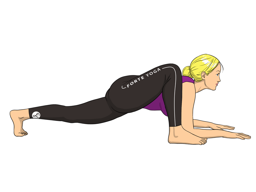 lizard-yoga-pose
